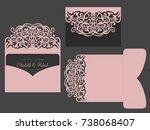tri fold pocket envelope. laser ... | Shutterstock .eps vector #738068407