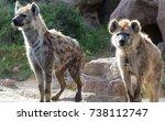 spotted hyena | Shutterstock . vector #738112747