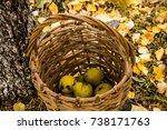 pear and a wicker basket | Shutterstock . vector #738171763