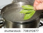 the pot of boiling water  which ...   Shutterstock . vector #738192877