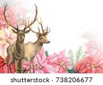 winter composition deer with... | Shutterstock . vector #738206677