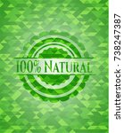 100  natural realistic green...   Shutterstock .eps vector #738247387