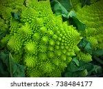 closeup image of romanesco... | Shutterstock . vector #738484177