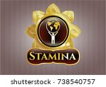 gold emblem with man lifting... | Shutterstock .eps vector #738540757