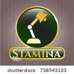 gold emblem or badge with desk ... | Shutterstock .eps vector #738543133