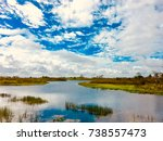 autumn day in the swamps of... | Shutterstock . vector #738557473