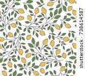 seamless hand drawn lemon... | Shutterstock .eps vector #738614587