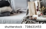 the still life details in the... | Shutterstock . vector #738631453