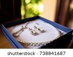 beautiful bridal jewelry set... | Shutterstock . vector #738841687
