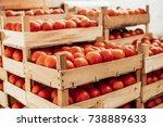 basket of tomato. preparing... | Shutterstock . vector #738889633
