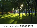 sunlight in the green trees | Shutterstock . vector #738895027