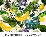 beautiful seamless vector... | Shutterstock .eps vector #738899797