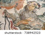 Closeup View Of A Tiger And An...