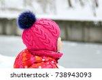 little cute caucasian girl in a ... | Shutterstock . vector #738943093