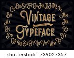 vector vintage decorative font... | Shutterstock .eps vector #739027357