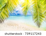 amazing summer background... | Shutterstock . vector #739117243