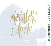 winter fun hand lettering... | Shutterstock . vector #739131877