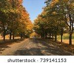 autumn landscape   Shutterstock . vector #739141153