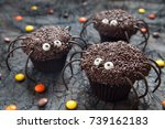chocolate spider cupcakes for a ... | Shutterstock . vector #739162183