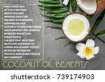 coconut oil and list of... | Shutterstock . vector #739174903