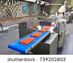 device for portioning minced... | Shutterstock . vector #739202803