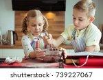two happy children baking... | Shutterstock . vector #739227067