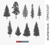 coniferous tree isolated... | Shutterstock .eps vector #739415107