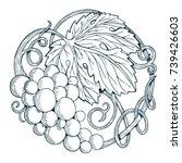 Hand Drawn Grape Vine...