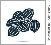 coriander seeds simple icon | Shutterstock .eps vector #739434847