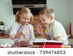 portrait of two happy children... | Shutterstock . vector #739476853
