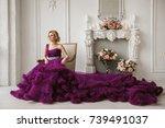 girl in evening dress   Shutterstock . vector #739491037
