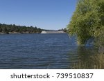 Small photo of The trees are plentiful at Lake Roberts in southwest New Mexico. They are right along the shoreline and even work their way into the water.
