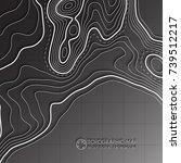 map line of topography. vector... | Shutterstock .eps vector #739512217