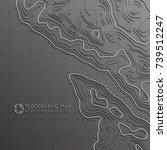 map line of topography. vector... | Shutterstock .eps vector #739512247