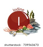 iodine in food. composition... | Shutterstock .eps vector #739563673