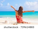 back view of long haired girl... | Shutterstock . vector #739614883
