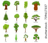different green tree types and... | Shutterstock .eps vector #739617337