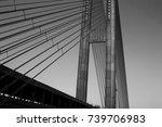 black and white bridge | Shutterstock . vector #739706983