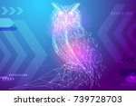 Abstract Image Owl Bird In The...