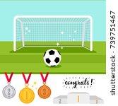 soccer goal and ball on the... | Shutterstock .eps vector #739751467
