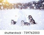 beautiful snow queen witn dogs. ... | Shutterstock . vector #739762003