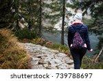 girl walking through the... | Shutterstock . vector #739788697