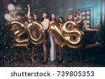 celebrating new year party.... | Shutterstock . vector #739805353