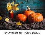 Three Orange Pumpkins  Warm...