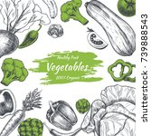 vector frame with vegetables .... | Shutterstock .eps vector #739888543
