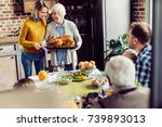 senior woman and her daughter... | Shutterstock . vector #739893013