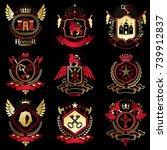 collection of vector heraldic...   Shutterstock .eps vector #739912837