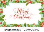 christmas winter holly berry... | Shutterstock .eps vector #739929247
