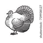 thanksgiving day turkey sketch... | Shutterstock .eps vector #739938127