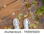 silver sneakers on the... | Shutterstock . vector #740005603